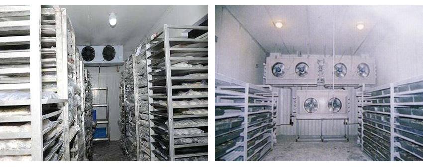 凍冷庫工程